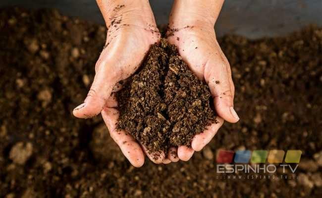 Cooperativa Nascente inicia hoje programa de defesa da sustentabilidade ambiental