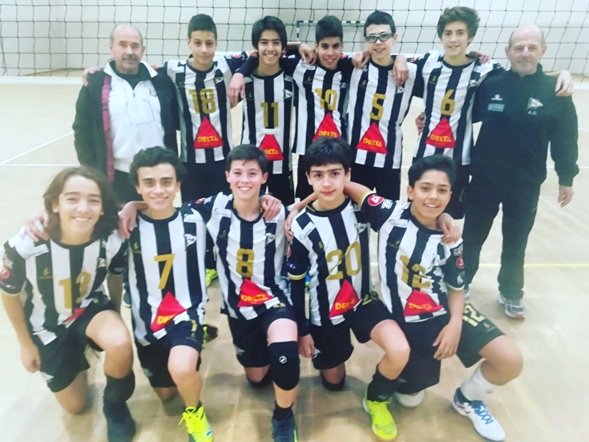 Voleibol Formação: Tigres invictos
