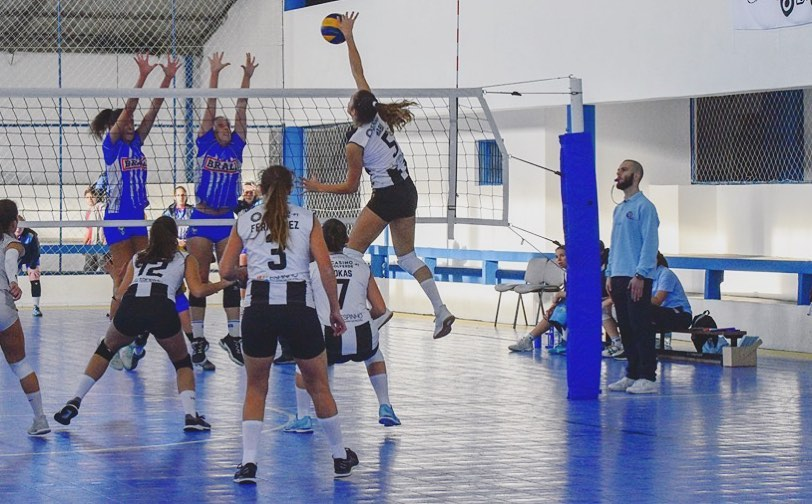 Voleibol SCE: Boa vitória para as Seniores!